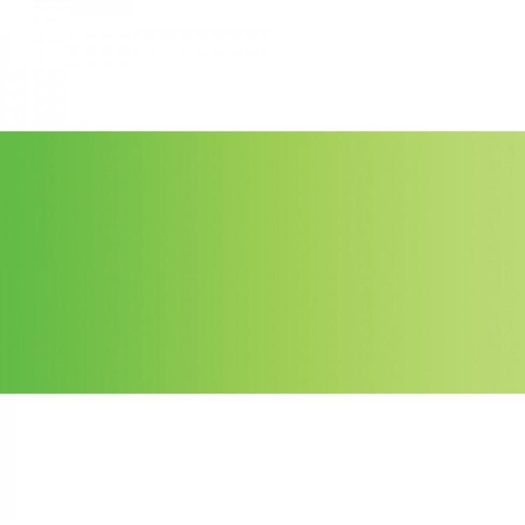 Shin Han : 15ml Premium Watercolour Paint : Permanent Green No.1 : 566