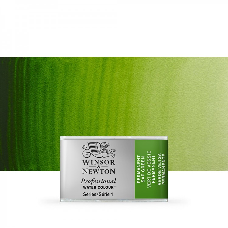 Winsor & Newton : Professional Watercolour Paint : Full Pan : Permanent Sap Green