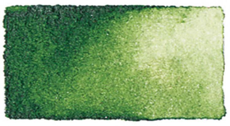 Daniel Smith : Watercolour Paint : 5ml : Sap Green