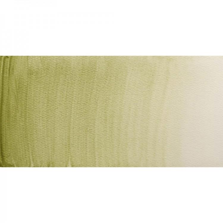 Winsor & Newton : Professional Watercolour Paint : 5ml : Terre Verte (Yellow Shade)