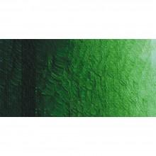 Ara : Acrylic Paint : 500 ml : Sap Green Lake Extra