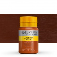 Winsor & Newton : Galeria : Acrylic Paint : 250ml : Burnt Sienna