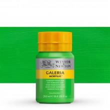 Winsor & Newton : Galeria : Acrylic Paint : 250ml : Permanent Green Light