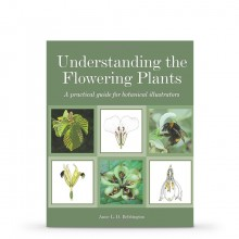 Understanding the Flowering Plants : A Practical Guide for Botanical Illustrators : Book by Anne Bebbington