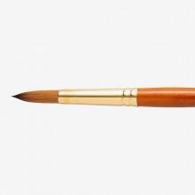 Pro Arte : Prolene Plus : Series 007 : Round : Size 12