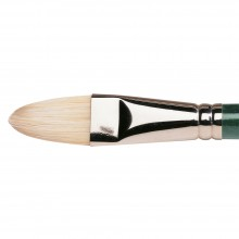 Winsor & Newton : Winton Brush : Filbert : No 12