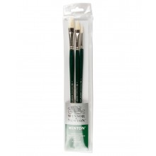 Winsor & Newton : Winton Oil Brush : Set of 3