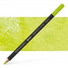 Caran d'Ache : Museum Aquarelle Pencil : Spring Green