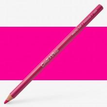Conte : Pastel Pencil : Cyclamen 41
