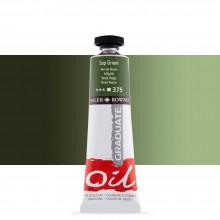 Daler Rowney : Graduate Oil Paint : 38ml : Sap Green