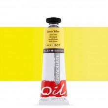 Daler Rowney : Graduate Oil Paint : 38ml : Lemon Yellow