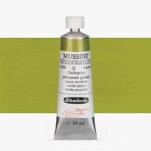 Schmincke : Mussini Oil Paint : 35ml : Yellowish Green