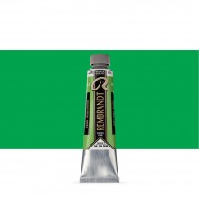 Royal Talens : Rembrandt Oil Paint : 40ml : Permanent Green Medium