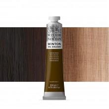 Winsor & Newton : Winton Oil Paint : 200ml : Van Dyke Brown
