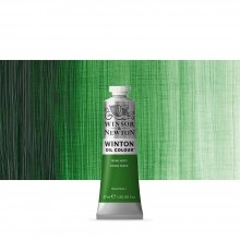 Winsor & Newton : Winton : Oil Paint : 37ml : Terre Verte