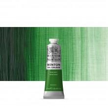 Winsor & Newton : Winton Oil Paint : 37ml : Terre Verte