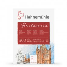 Hahnemuhle : Britannia : Block : 300gsm : 140lb : 42x56cm : 12 Sheets : Rough