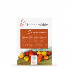 Hahnemuhle : Cezanne block 300gsm(140lb) 24x32cm : 10 sheets ROUGH