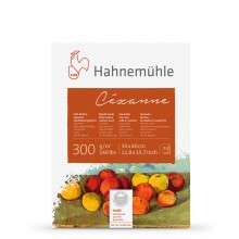 Hahnemuhle : Cezanne block 300gsm(140lb) 30x40cm : 10 sheets NOT