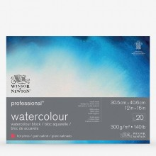 Winsor & Newton : Professional : Watercolour Paper Block : 300gsm : 20 Sheets : 12x16in : Hot Pressed