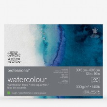 Winsor & Newton : Professional : Watercolour Paper Block : 300gsm : 20 Sheets : 12x16in : Rough