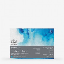 Winsor & Newton : Professional : Watercolour Paper Block : 300gsm : 20 Sheets : 7x10in : Cold Pressed