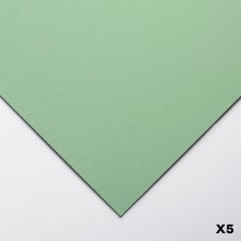 Clairefontaine : Pastelmat : Pastel Paper : Pack of 5 Sheets : 24x32cm : Light Green
