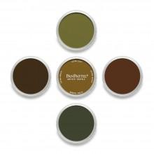 PanPastel : Set : Earth Colours : 5 Colours
