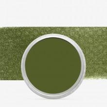 PanPastel : Bright Yellow Green Extra Dark : Tint 1