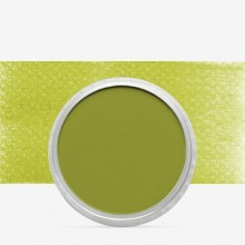 PanPastel : Bright Yellow Green Shade : Tint 3