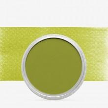 PanPastel : Bright Yellow Green Shade : Tint 3