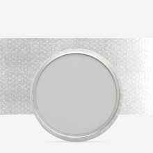 PanPastel : Neutral Grey Tint : Tint 7