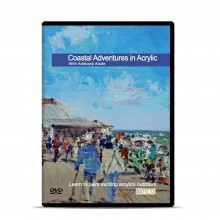 Townhouse DVD : Coastal Adventures in Acrylic : Adebanji Alade Prov ROI
