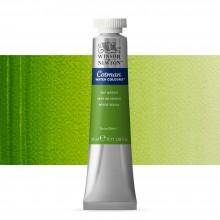 Winsor & Newton : Cotman Watercolour : 21ml : Tube Sap Green