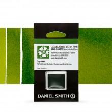 Daniel Smith : Watercolour Paint : Half Pan : Sap Green : Series 2