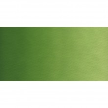 Old Holland : Watercolour Paint : Half Pan : Chromium Oxide Green