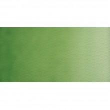 Old Holland : Watercolour Paint : Half Pan : Cinnabar Green Deep Extra