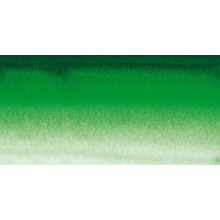 Sennelier : Watercolour Paint : Half Pan : Hooker's Green