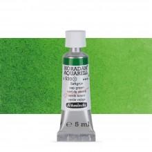 Schmincke : Horadam Watercolour Paint : 5ml : Sap Green