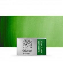 Winsor & Newton : Professional Watercolour : Full Pan : Hookers Green