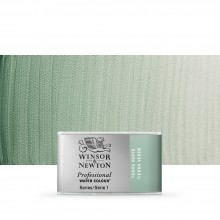 Winsor & Newton : Professional Watercolour Paint : Full Pan : Terre Verte