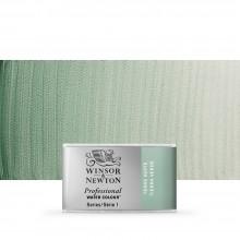Winsor & Newton : Professional Watercolour Paint : Full Pan : Terre Verte
