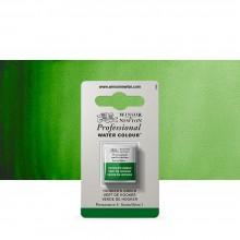 Winsor & Newton : Professional Watercolour : Half Pan : Hookers Green