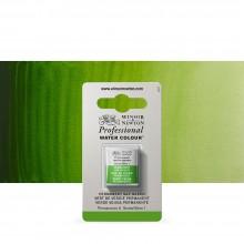 Winsor & Newton : Professional Watercolour : Half Pan : Permanent Sap Green