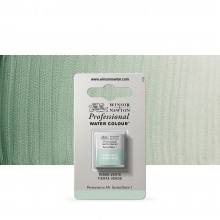 Winsor & Newton : Professional Watercolour Paint : Half Pan : Terre Verte