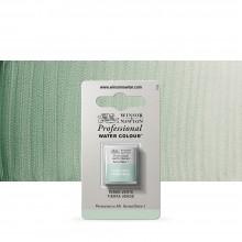 Winsor & Newton : Professional Watercolour : Half Pan : Terre Verte