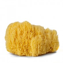 Handover : Natural Sea Sponge : Extra Large Approx. 6.5 - 7 in