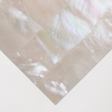 Mother of Pearl : White strip : 24 x 14cmm