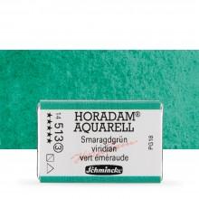Schmincke : Horadam Watercolor Paint : Full Pan : Viridian