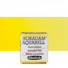 Schmincke : Horadam Watercolor Paint : Half Pan : Aureolin Hue